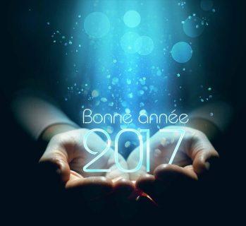 glbe-image-bonne-annee-2017
